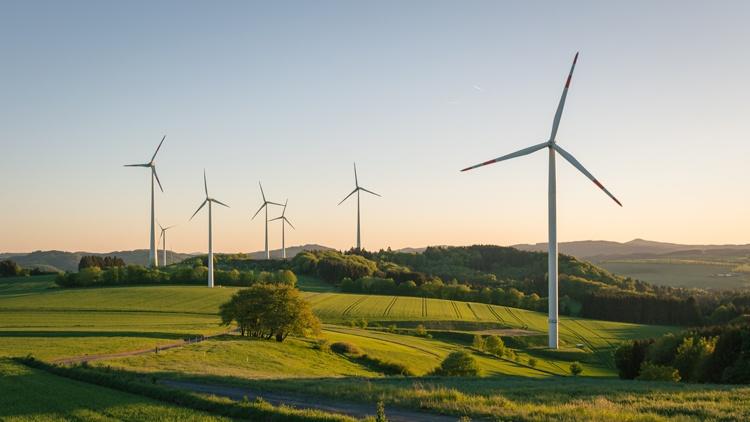 Windräder in sanft-hügeliger Landschaft